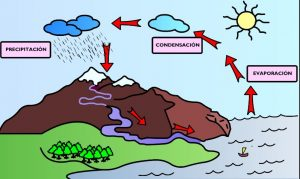 Ciclo del Agua para ninos
