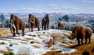 Animales del paleolítico