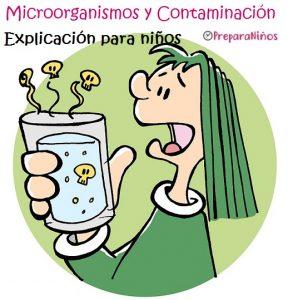 Los microorganismos y la contaminación de alimentos para niños