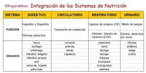Integración de los Sistemas de Nutrición