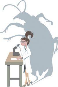 El Microscopio y los microorganismos explicación para niños de primaria