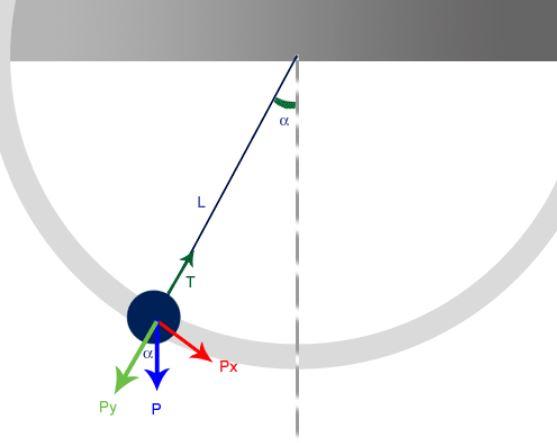 El péndulo en fisica