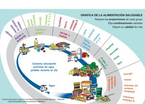 Alimentación Saludable para niños de Primaria: El Óvalo Nutricional