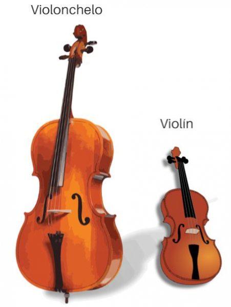 Comparacion de tamaño entre el violin y el violonchelo