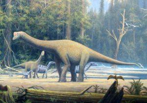 Sauropodos