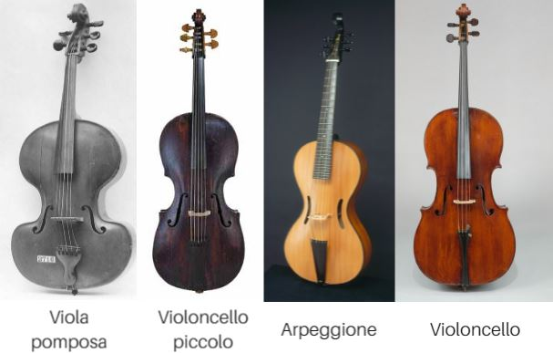 Historia del Cello: Su Evolucion