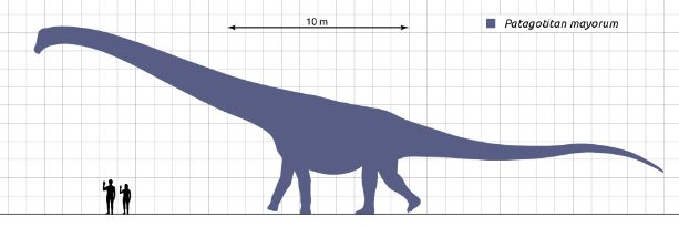 Patagotitan, el dinosaurio mas grande