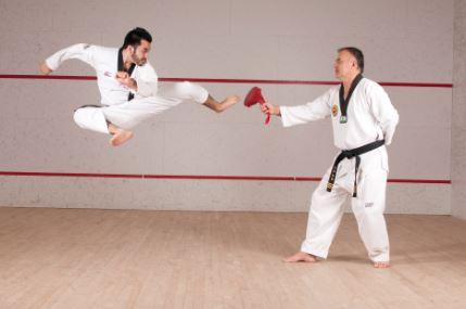 Resumen del karate