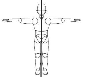 Simetria en el cuerpo humano