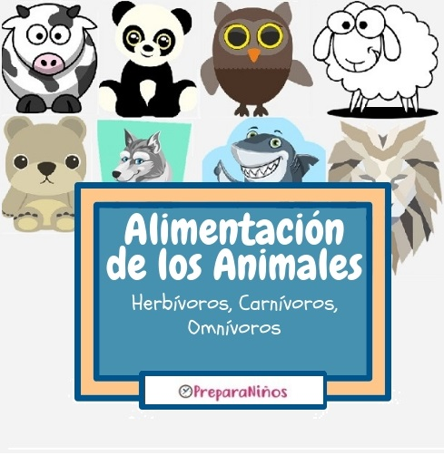 Clasificación de los Animales según su Alimentación