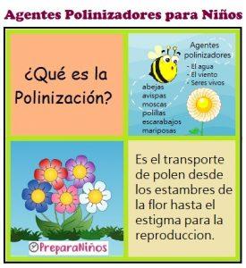 Reproducción de las Plantas: Agentes de Polinización