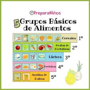 5 Grupos Básicos de Alimentos
