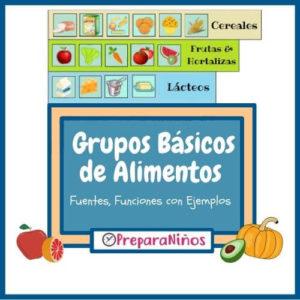 5 Grupos Básicos de Alimentos para Niños de Primaria